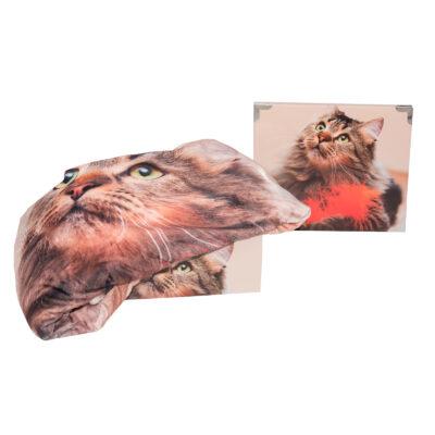 Daunex coperta plaid peluches agnellato gatto